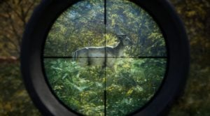 theHunter Call of the Wild torrent