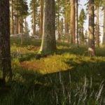 Hunting Simulator pobierz